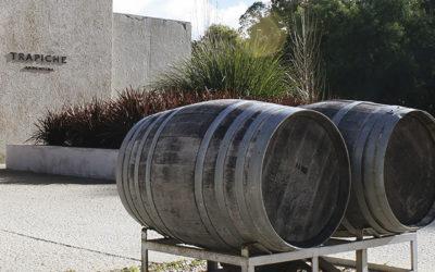 Trapiche, la bodega de vino que descubrió algo nuevo